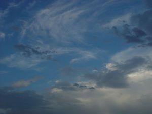 http://www.darmowe-zdjecia.org/gallery/displayimage.php?album=5&pos=59